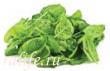 Herbalife vred ili polza