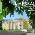 Независимый Партнер Гербалайф в Бородино