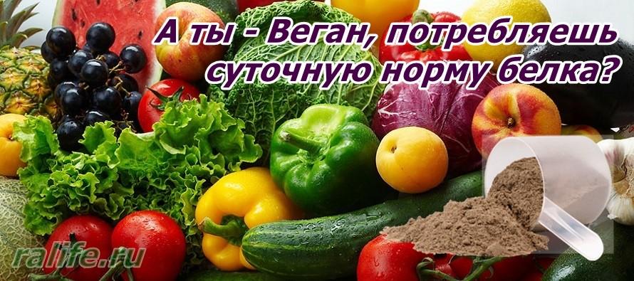 питание для вегетарианца